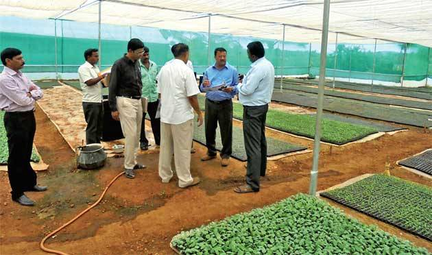 Horticulture officials and farmers discussing how to store and market vegetables through the FPO