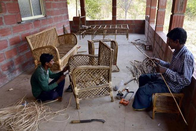 Soliga tribal community at MM Hills have been trained to use the invasive Lantana species to make furniture.   | Photo Credit: Bhagya Prakash K
