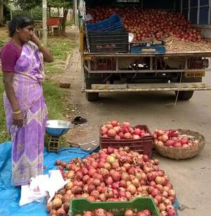 The popularity of the fruit can be attributed to its perceived health benefits for diabetics and cancer patients.   Photo Credit: G R N SOMASHEKAR